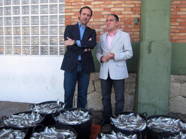 El presidente balear, José Ramón Bauzá, y el del PP de Málaga, Elías Bendodo