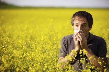 ¡Llegan las alergias!