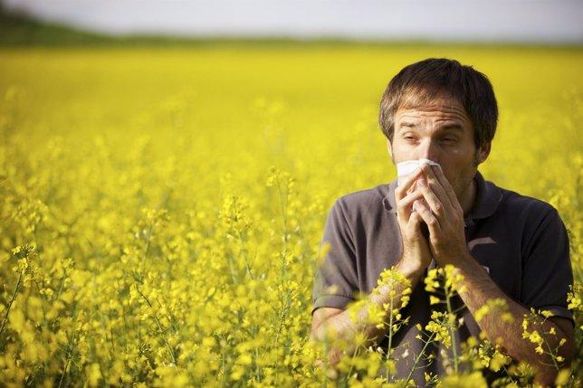 Afecciones respiratorias en primavera, asma, alergia, rinitis