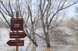 El Senado tramita la petición del PSOE para que Rajoy comparezca por las inundaciones del Ebro