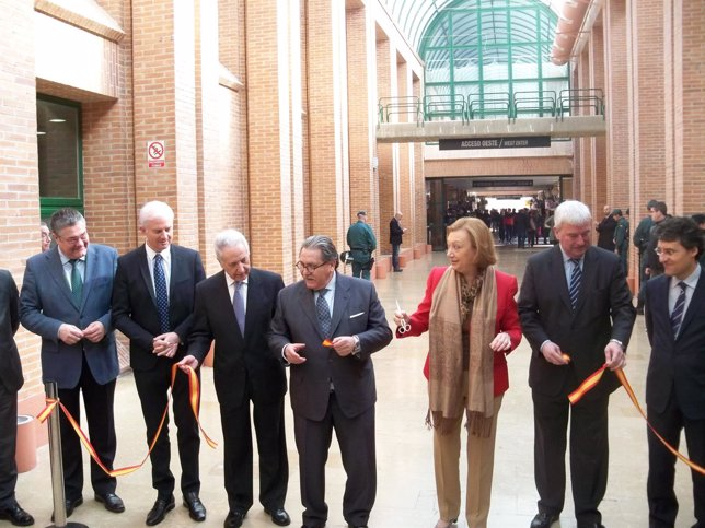 Torres, Suarez, Lobon, Teruel, Rudi, Alcalde