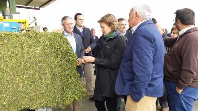 Isabel Garcia Tejerina visita Agroquivir