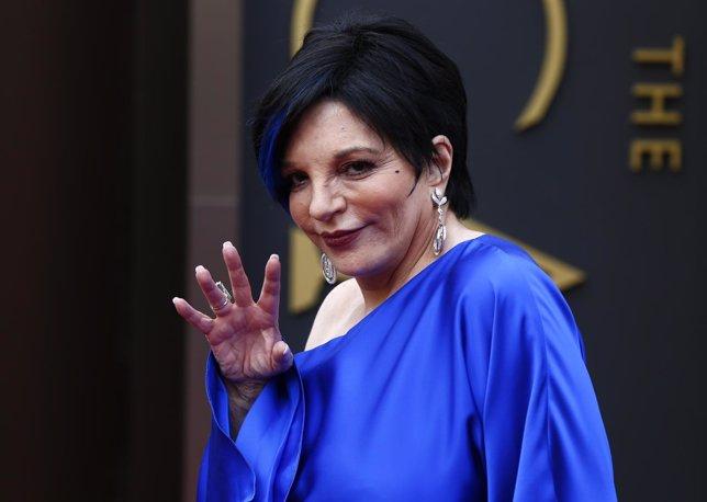 Liza Minelli en los Oscar de 2014