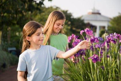 5 actividades familiares para la Primavera