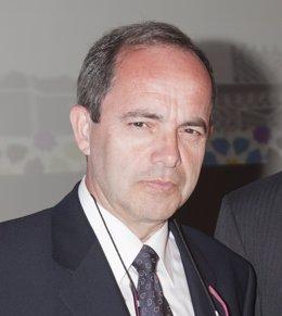 El doctor Durá, autor del estudio.