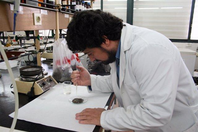 El investigador Ángel Gordillo Rivero