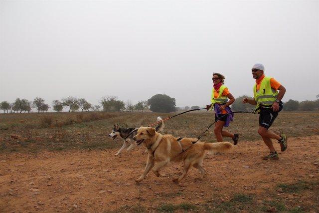 I carrera de Alfamén-Ruta de Altomira.