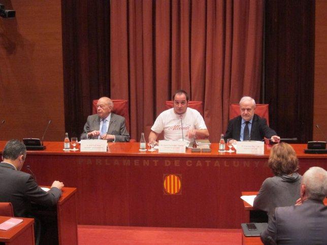 Expte.Jordi Pujol,diputado David Fernández (CUP)