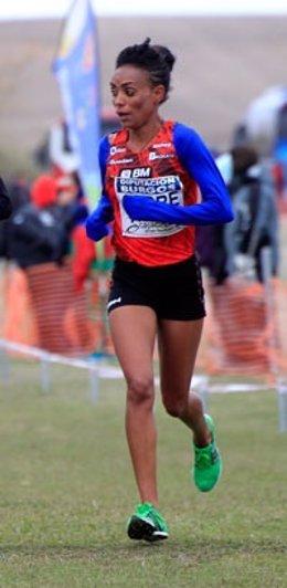 La atleta española Trihas Gebre en el Mundial de Cross