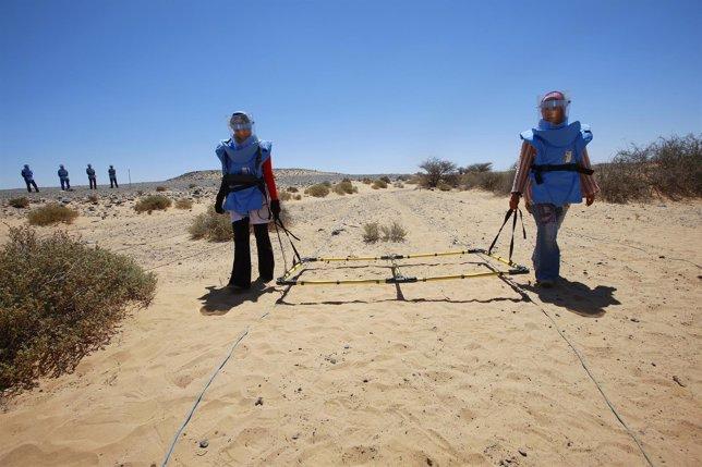 Limpieza de minas en el Sáhara Occidental