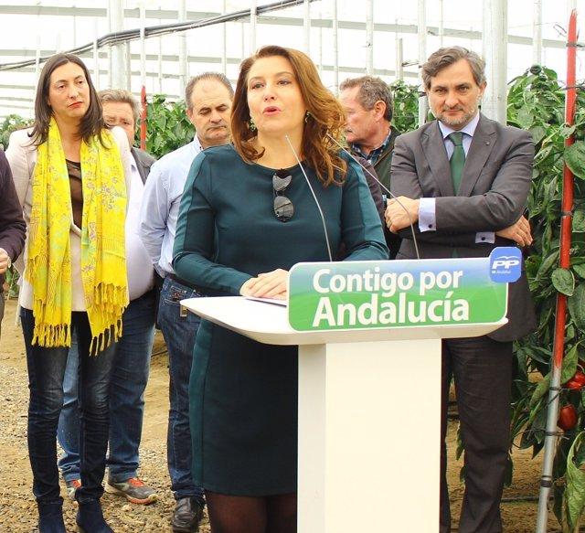 La candidata del PP al Parlamento andaluz por Almería Carmen Crespo