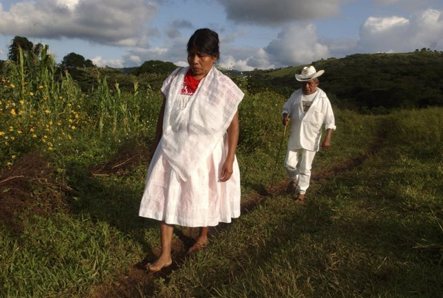 To Match Feature HEALTH MEXICO MIDWIVES