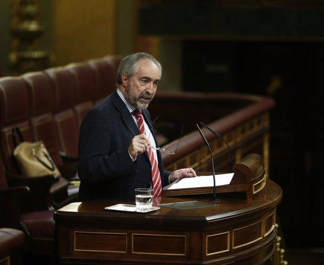 Rafael Larreina
