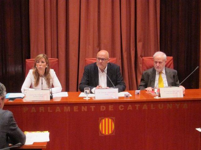 Camacho comparece en la comisión del fraude del Parlament