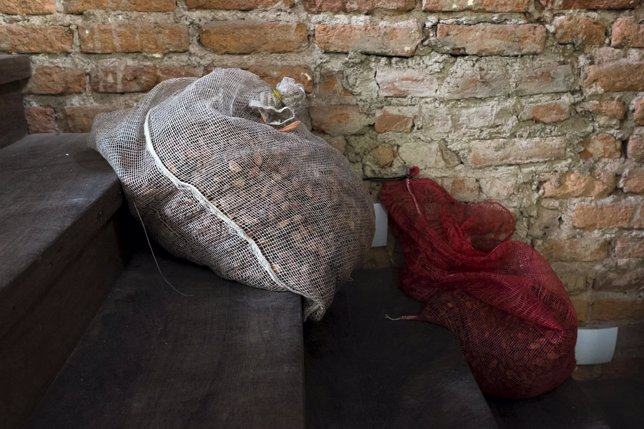 Sacks with cocoa beans are seen at a store in Caracas