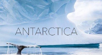 Espectacular paseo en drone por La Antártida, sus glaciares y sus ballenas