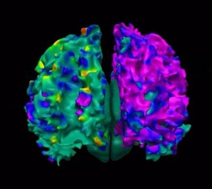 Revelan el misterio de una proteína clave en las enfermedades neurodegenerativas