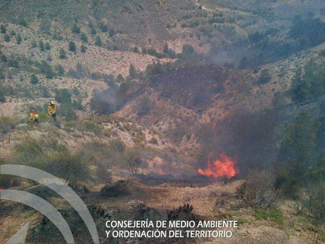 Uno de los focos del incendio de Huércal-Overa