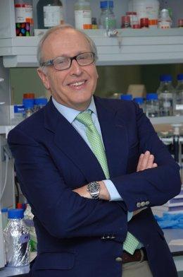 El profesor Luis Fernández-Vega