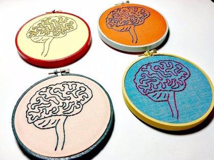 Identifican un tipo especial de grasa esencial para el cerebro