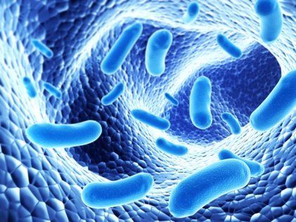 Probióticos para detectar el cáncer de hígado