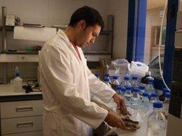 Investigador de la Universidad de Extremadura