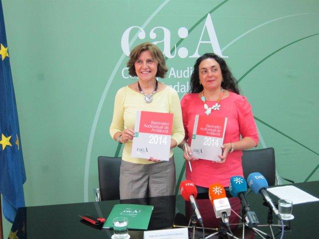 Presentación del Barómetro Audiovisual de Andalucía de 2014