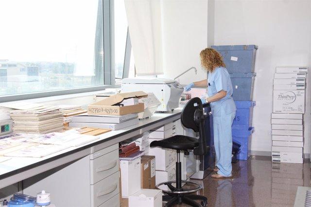 El Servicio de Anatomía Patológica se traslada a la nueva Fe