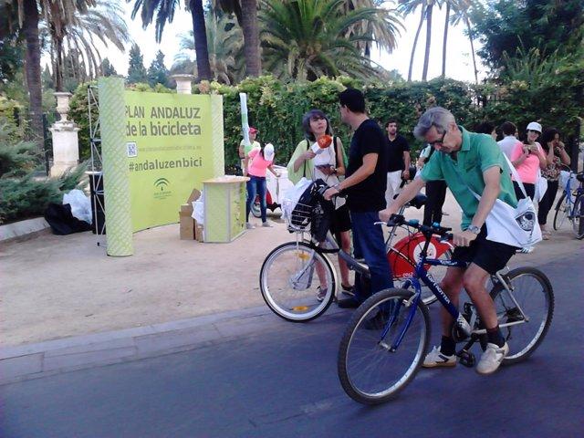 Ciclistas en Sevilla.