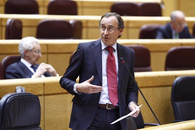 Alfonso Alonso en el Senado