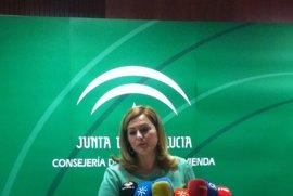 """Junta """"respeta pero no comparte"""" auto del TSJA sobre el Algarrobico y señala que no hubo temeridad"""