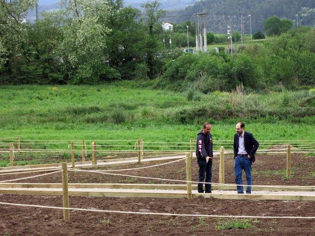Huertos sostenibles Torrelavega