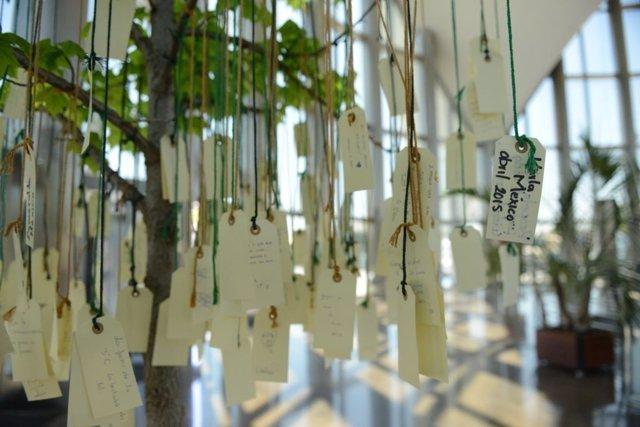 Mensajes de los visitantes en el árbol de los 'Ecodeseos'