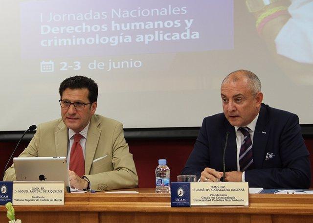El presidente del TSJ de Murcia, Miguel Pascual de Riquelme