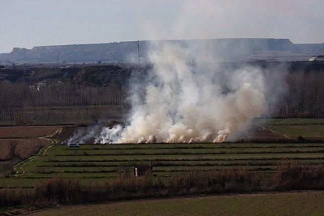 Quema agrícola, fuego, incendio, campos, cultivos