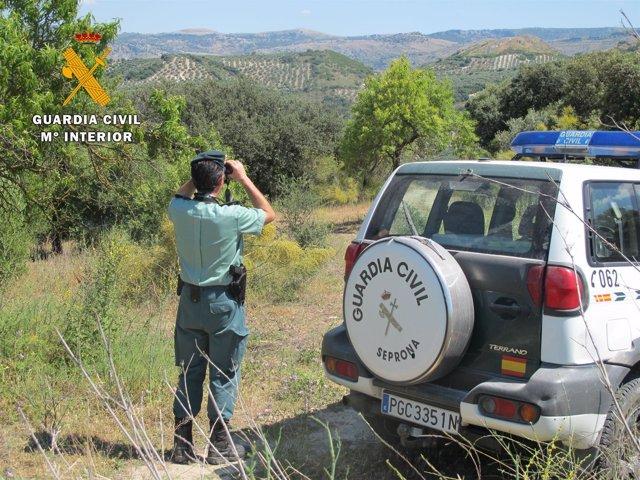 La Guardia Civil realiza labores de vigilancia de incendios forestales