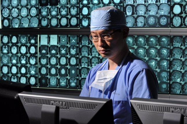 Alterar las células madres tumorales del cerebro