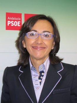 La nueva consejera de Cultura de la Junta de Andalucía, Rosa Aguilar