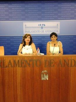 Teresa Rodríguez en rueda de prensa este miércoles