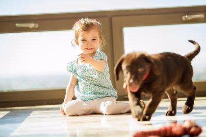 Los niños se sienten mejor con sus mascotas cerca