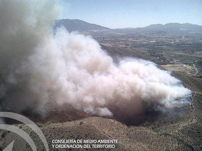 Incendio forestal en Pizarra