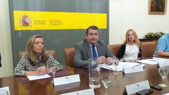Reunión de la coordinación de las unidades de violencia de género