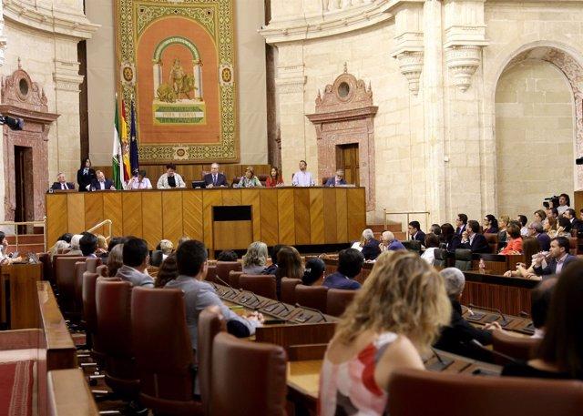 Imagen del Pleno del Parlamento.