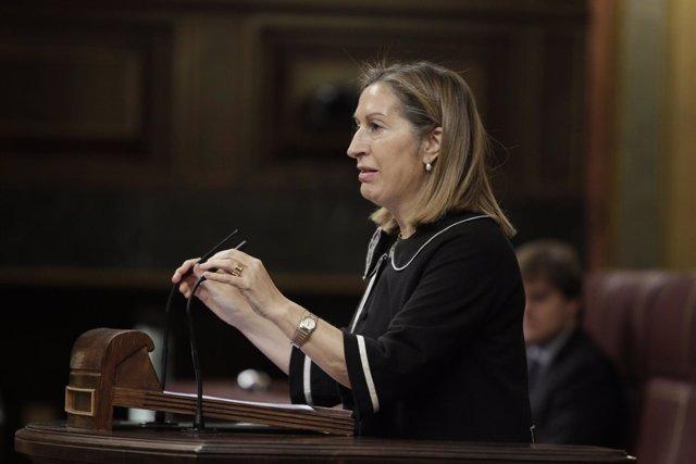 La ministra de Fomento, Ana Pastor, en el Congreso