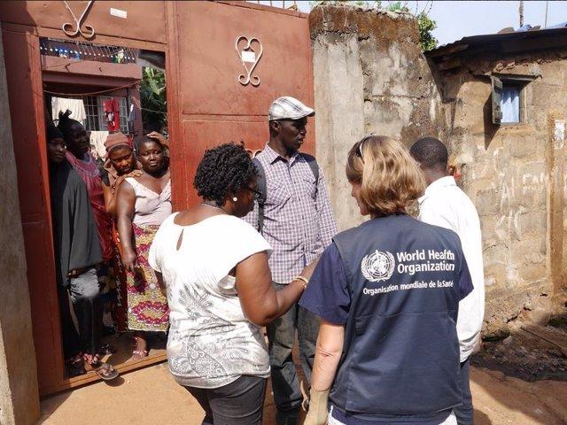 ébola, Organización Mundial de la Salud