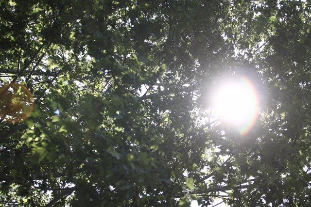 Recursos de sol, calor, buen tiempo