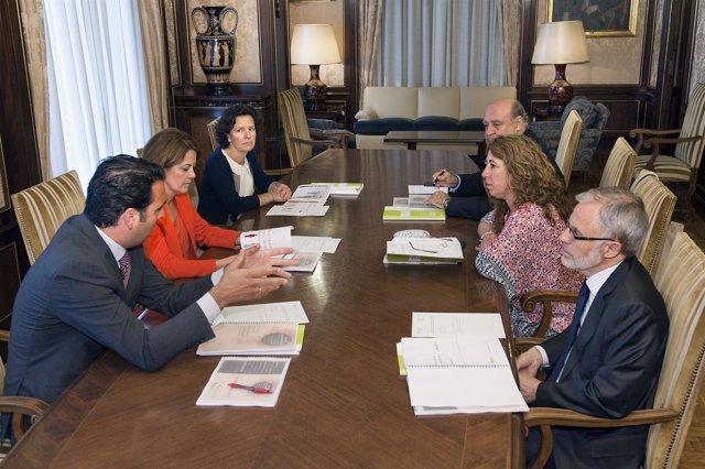 Reunión de la Comisión Permanente contra la violencia de género.