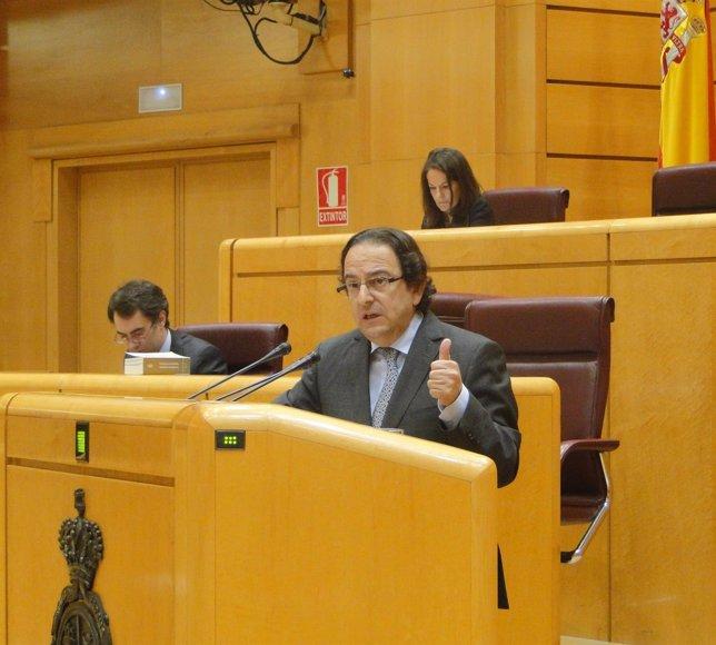 El senador Luis Aznar (PP) en el Senado