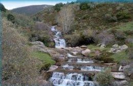 Hábitat natural en Alto Campoo