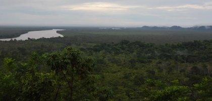 Parque Nacional de Los Katíos (Colombia) deja de estar en peligro